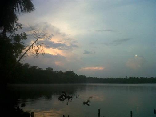 Acabo de compartir la foto de Oscar Castro Del Aguila que representa a: Quistococha, Iquitos - Perú