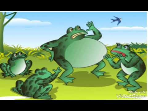 13 Mewarnai Gambar Katak Frog Cartoon Images Animated Frog
