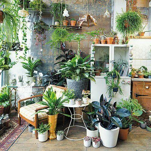 46 Wonderful Diy Indoor Garden Ideas To Freshen Your Home Interior Room With Plants Plant Decor Plants