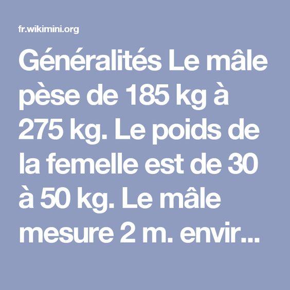Généralités Le mâle pèse de 185 kg à 275 kg. Le poids de la femelle est de30 à 50 kg. Le mâle mesure 2 m. environ et la femelle 1,50 m.  Habitat Les otaries vivent sur les côtes de l'hémisphère Nord.  Alimentation Les otaries mangent beaucoup de poissons.  Déplacement Les otaries marchent sur la terre ferme en s'aidant de leurs nageoires et elles nagent aussi dans l'eau.  Reproduction Les mâles peuvent faire des petits dès l'âge de 5 ans et la femelle à l'âge de 3 ans.  Ils se reproduisent…