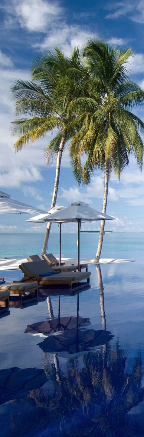 Maldives and islands on pinterest for Conrad rangali maldivas