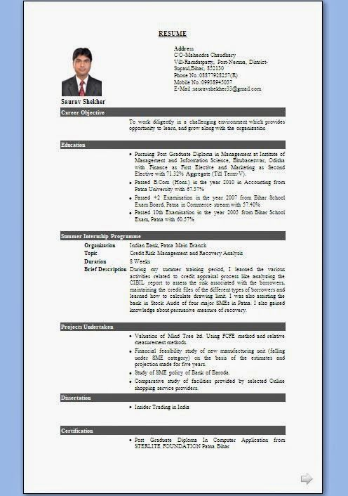 resume writing format  fill in personal particular format of    sample