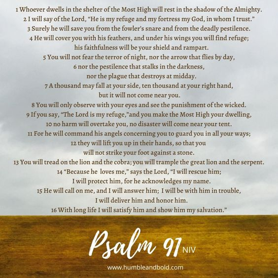 Pin By Leah On Prayers In 2020 Psalms Psalm 91 Prayers