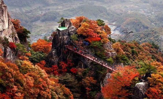Cảnh thu trong công viên quốc gia Seoraksan