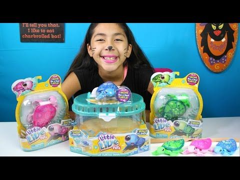 Little Live Pets Turtle Tank Digi Unboxing Toy Review By