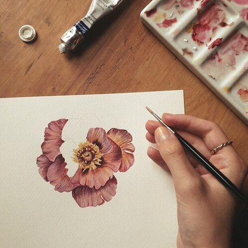 art, draw, flower, paint, pink, pretty