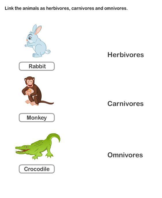 Common Worksheets Free Printable Science Worksheets For Kids – Free Printable Science Worksheets for Kindergarten
