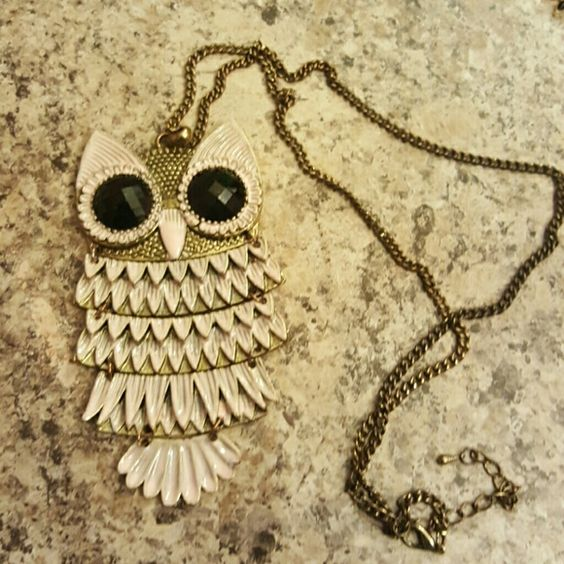 Final price! Owl Necklace Cute owl necklace! Jewelry Necklaces