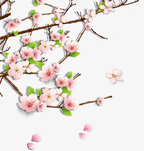 Cherry Pattern Branch Vector Pattern Cherry Blossom
