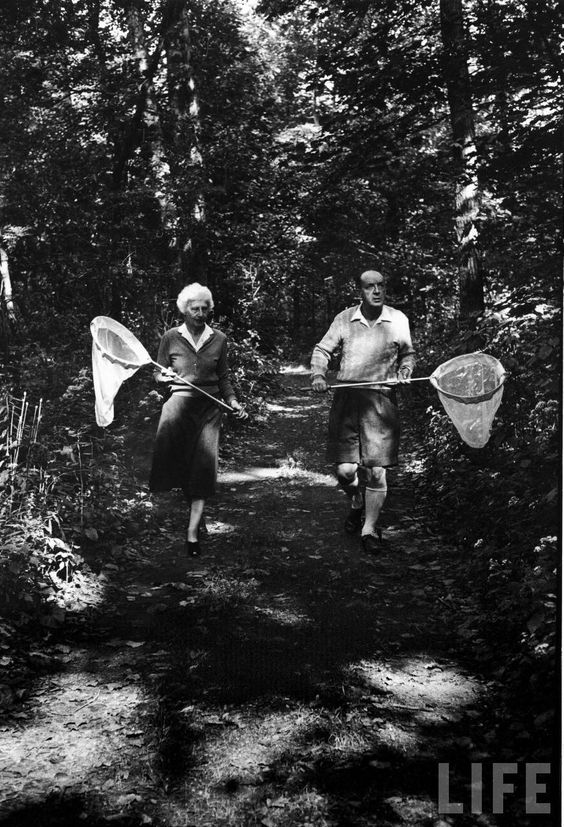 The Nabokovs, chasing butterflies. Facebook - www.facebook.com/outdoorcampus Our website www.outdoorcampus.org/