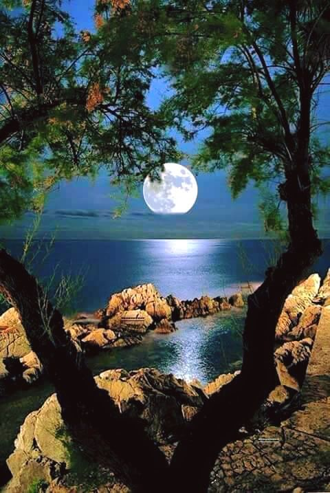 The Moon Beautiful Nature Nature Pictures Beautiful Moon