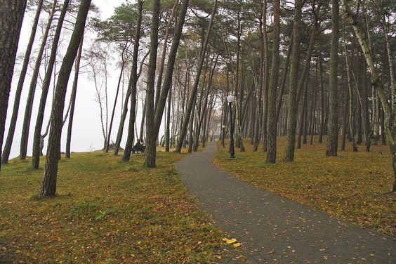 Дорожки и лавочки с видом на море в парке. Фото: Evgenia Shveda