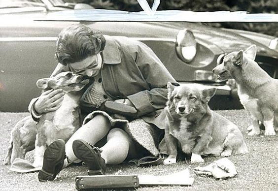 Queen Elizabeth Loves Corgis