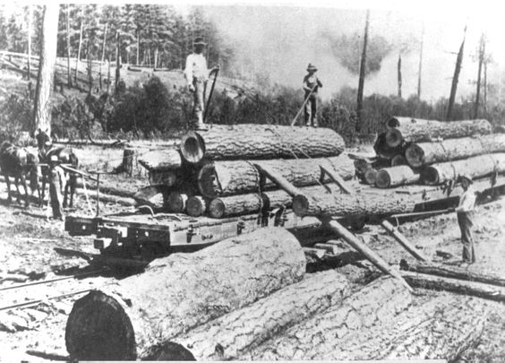 Lumberjacks, Rails and Trains