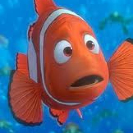 nemo and marlin relationship problems