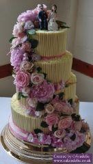 2011-07-02 White Chocolate rainbow cake