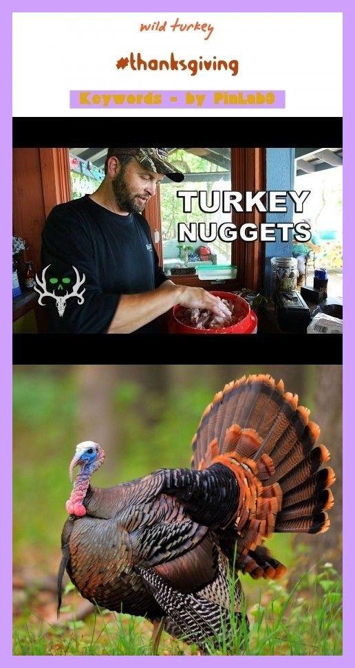Wild Turkey Wilder Truthahn