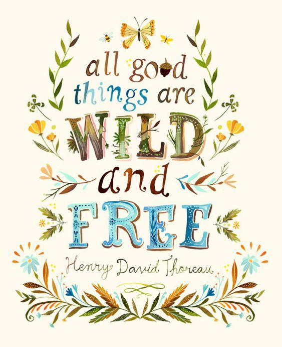 Quote by Thoreau and watercolor art by Katie Daisy. All good things are wild and free. #quote #thoreau #freedom