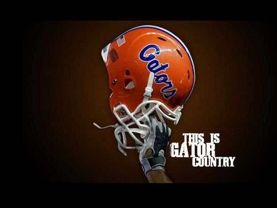 Florida Gators Football Helmet