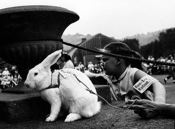 W Eugene Smith Usa Pennsylvania Pittsburgh 1955 A Pet Show Photographer Portfolio Magnum Photos Photo