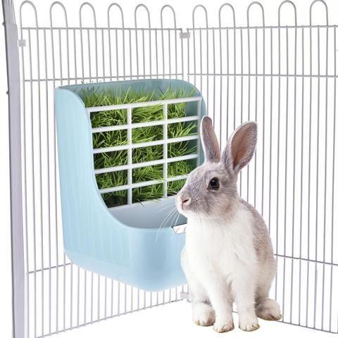Get Pet Supplies Online Bunny Supplies Small Pets Pet Rabbit