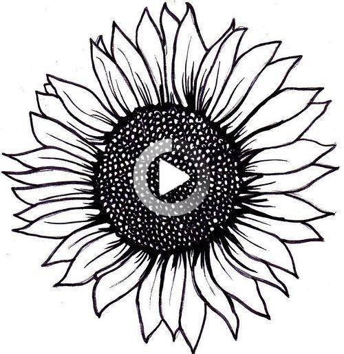Disposizione Semplice Del Tatuaggio Del Girasole Del Disposizione Girasole Semplice Tatuaggio In 2020 Sunflower Tattoos Sunflower Tattoo Sunflower Drawing