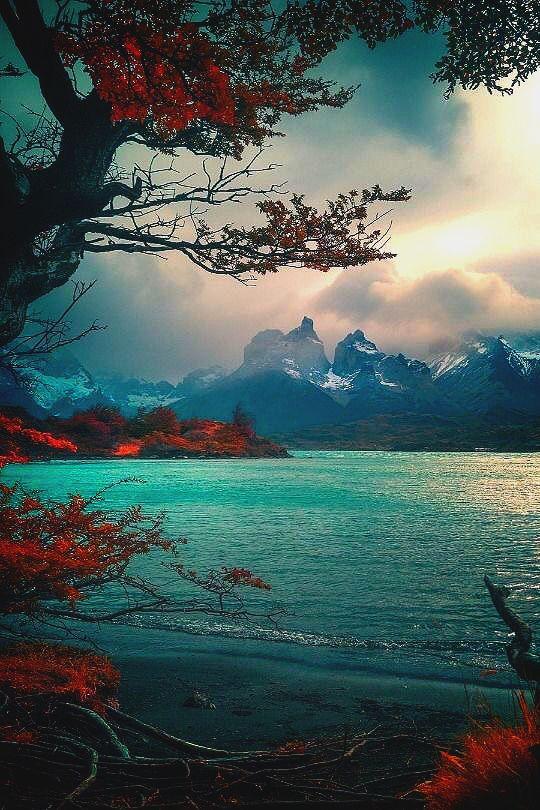 In The Foothills Of The Andes Merveceranphoto S Izobrazheniyami