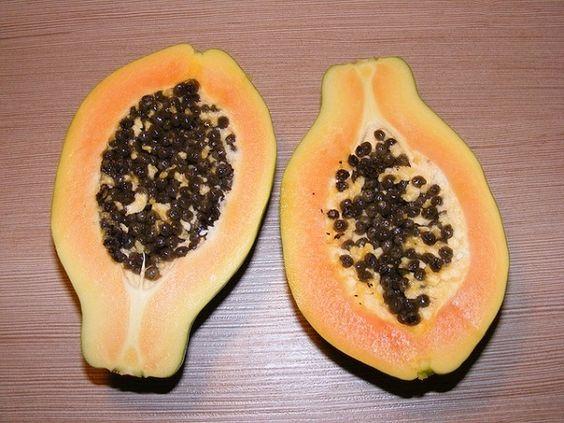 como-cultivar-un-papayo-en-tu-jardin-03