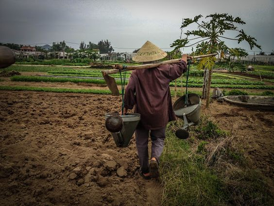 Farmer for a day in Hoi An