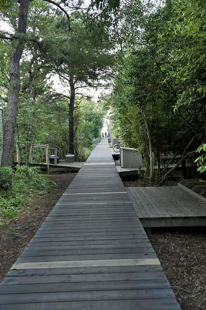 Boardwalk path on Fair Harbor, Fire Island, Long Island, New York State by jackie weisberg, via Flickr