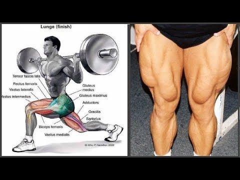 New Video By مهووس عضلات كمال الاجسام On Youtube الاهتمام بـ عضلات الأرجل والقيام بتمريناتها هو أمر ينصح به Leg Workout Muscles In Your Body Lower Body Workout