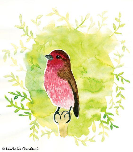 Birdies on Behance