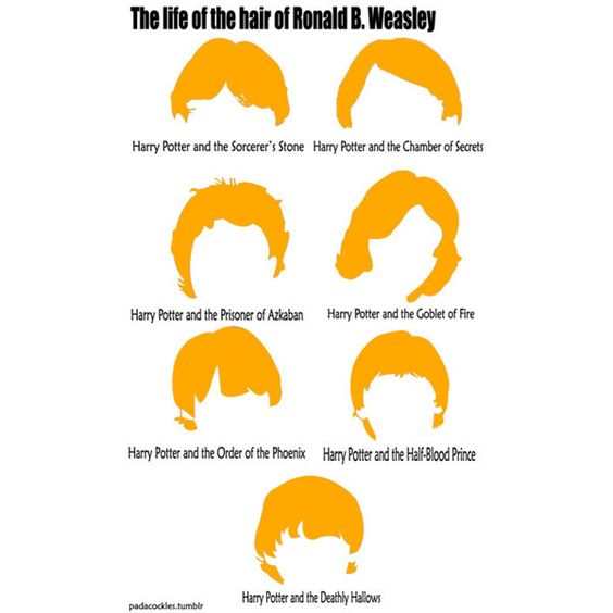Harry Potter Humor! ❤ liked on Polyvore Forth year, the year nobody at Hogwarts got a hair cut
