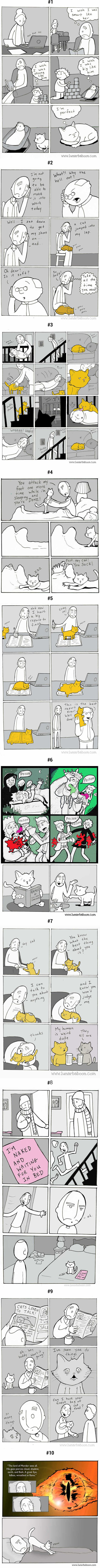 10 Comics tell what a cat person's life is like - 9GAG
