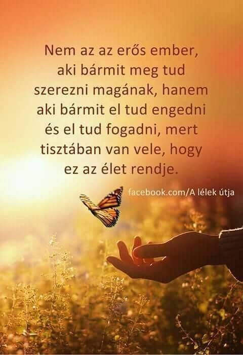 képes idézetek barátságról Az élet rendje   Affirmation quotes, Motto quotes, Hungarian quotes