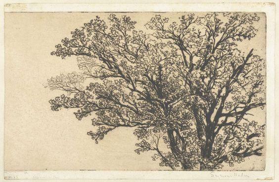 Francis Seymour-Haden (Sir) | Kruin van een boom, Francis Seymour-Haden (Sir), 1858 - 1859 | Een boom met jonge blaadjes. Mogelijk het uitzicht vanuit een raam van de 'Star and Garter' in Richmond.