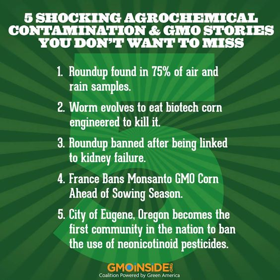 GMOs, Roundup, Monsanto, contamination, super-worms, bees, bans and more! If you haven't been keeping up with the news, here are 5 stories you don't want to miss! If you've read all of these please share this with your friends and family!  Source links: 1. http://www.greenmedinfo.com/blog/roundup-weedkiller-found-75-air-and-rain-samples-gov-study-finds  2. http://www.wired.com/wiredscience/2014/03...See More: Monsanto And Gmo, Gmos Exposed, Gmo Monsanto, Gmo Food, Ban Gmo, Eliminate Gmo Ugh, Gmos Roundup, Organic Food
