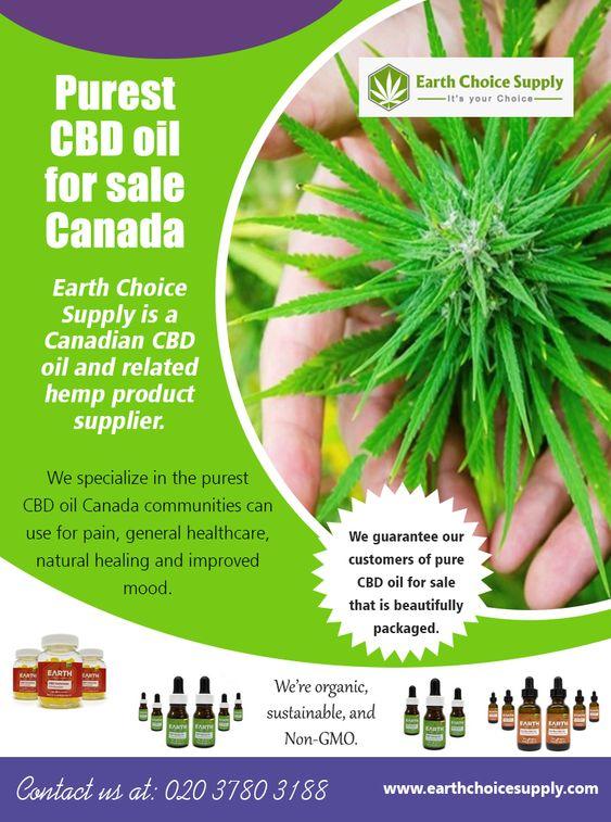 Purest CBD Oil for Sale Canada