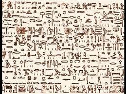 Resultado de imagem para tulli papyrus