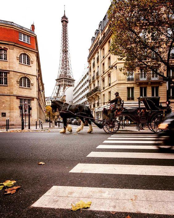Avenue Rapp, Paris | copyright Angie McMonigal 2015