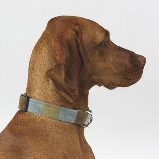 Dog Collar In Chocolate Stripe Microvelvet - Size: Medium $30.95
