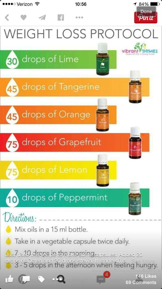 Plus 20 drops Ocatea and 20 drops Stevia