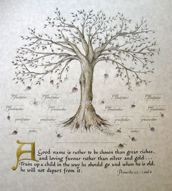FAMILY TREE ART Print Package of 3 by applesofgold on Etsy, $24.00