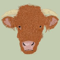 Bulls Head vector art illustration