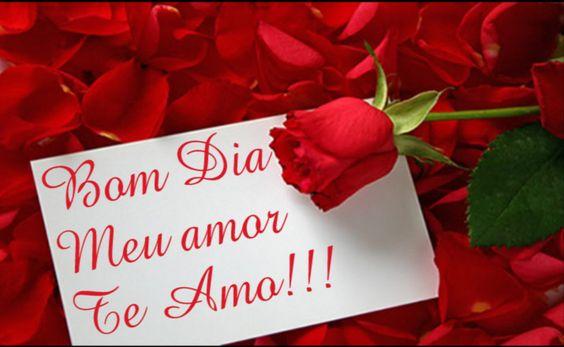Bom dia meu amor te amo!!