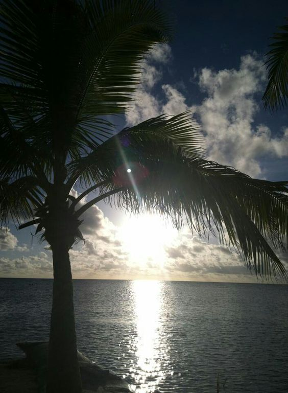 """.ANOTHER PIC OF:  """"JEHOVAH GOD'S WONDERFUL WORKS""""~ FOR ALL TO SEE & WITNESS EVERYDAY!!! ~XOX"""