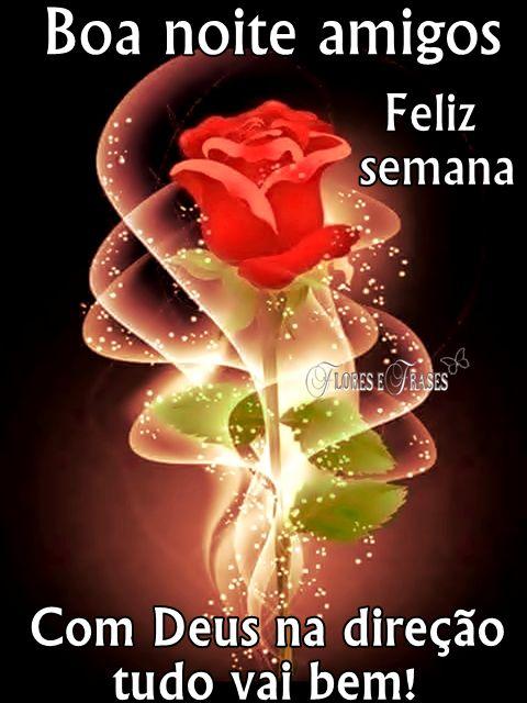 Flores e Frases: BOA NOITE AMIGOS...