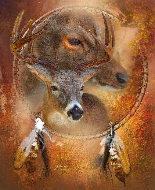 تفسير رؤية الغزال في المنام للعزباء والمتزوجة لابن سيرين وابن شاهين موقع مصري Spirit Animal Art Dream Catcher Art Native American Art