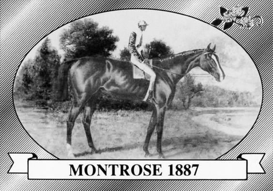 Montrose- 1887 Kentucky Derby Winner