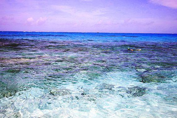 ¿CUÁL ES LA CAUSA DE LOS DIFERENTES COLORES DE LOS OCÉANOS?  http://generacionnatura.org/k2-information/noticias-positivas/curiosidades/1287-causa-color-oceanos.html